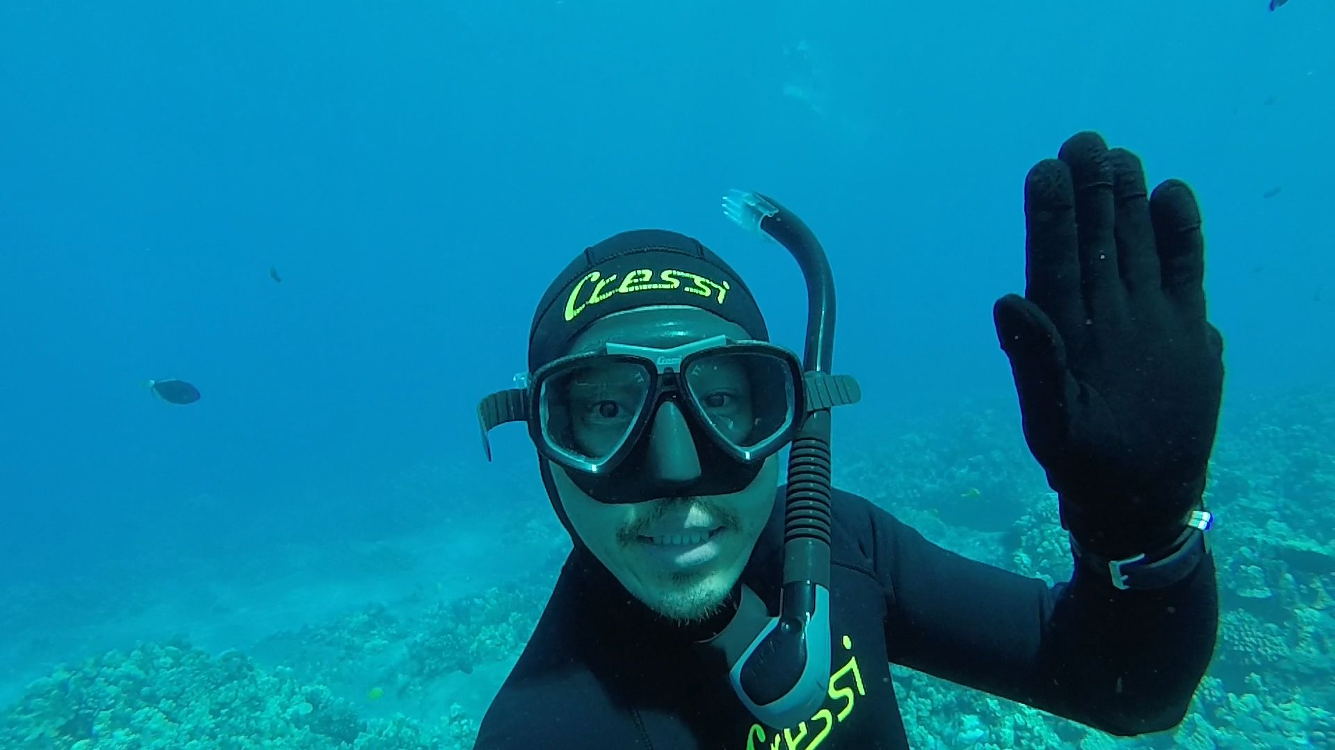 Sal snorkeling