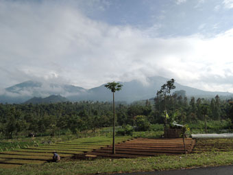 Indonesian Scenery