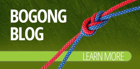 Bogong Blog