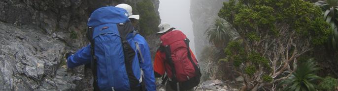 Trekking Packs