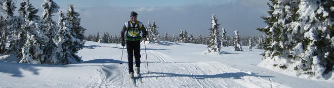 Ski Bindings
