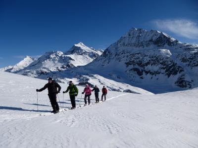 Alpine Ski Touring