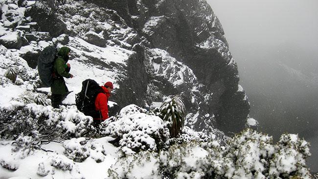 Winter bushwalking