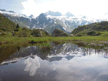 Zillertal Alps view